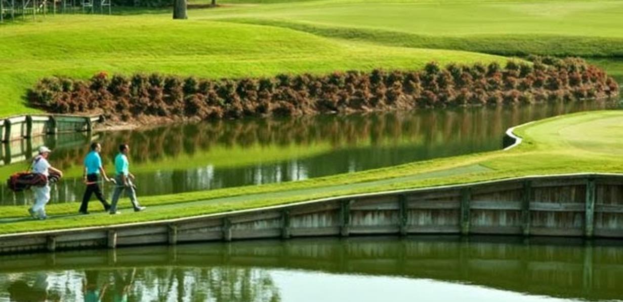 collaborate_golf